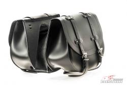 Custom Acces HD Saddlebags Harley Davidson Sportster 883 2009-18